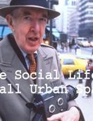 小型公共空间的社会生活