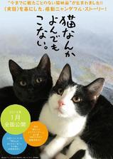 为什么猫都叫不来海报