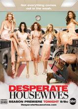 绝望主妇 第三季海报