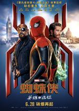 蜘蛛侠:英雄远征海报