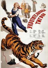 驯虎女郎海报
