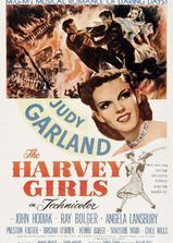 哈维姑娘海报