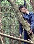 青木原森林