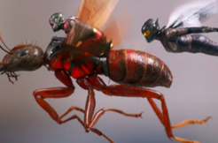 蚁人2:黄蜂女现身