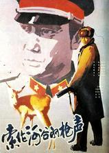 索伦河谷的枪声海报