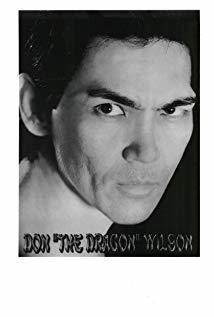 唐龙·威尔逊 Don 'The Dragon' Wilson演员