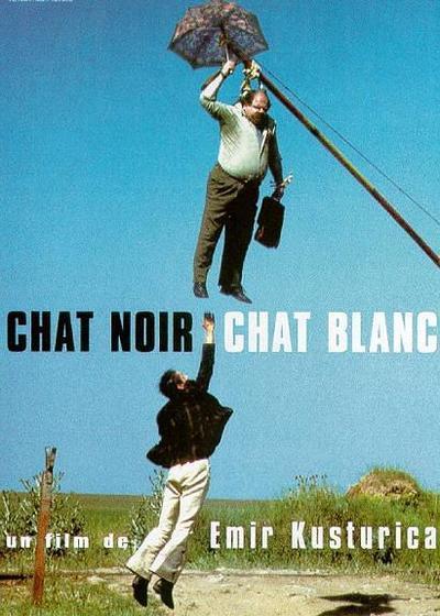 黑猫白猫海报