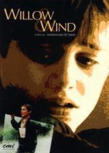 让风带着我起飞海报