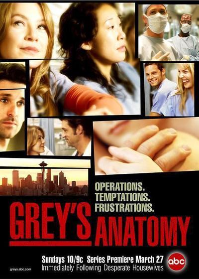 实习医生格蕾 第一季海报