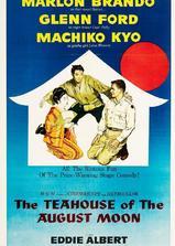 秋月茶室海报