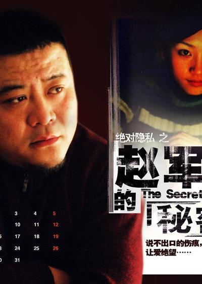 赵军的秘密海报