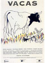 牛的见证海报