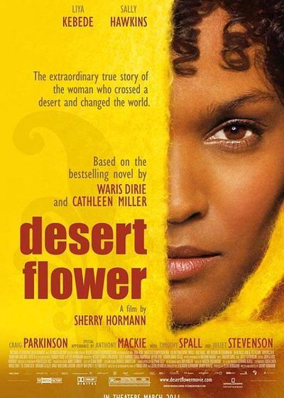 沙漠之花海报
