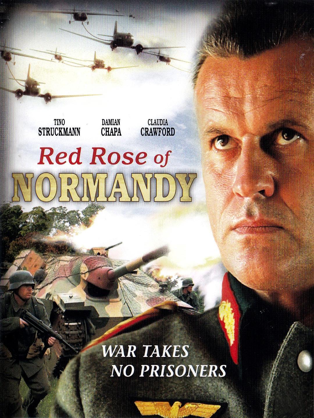 诺曼底红玫瑰