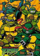 忍者神龟 第二季海报