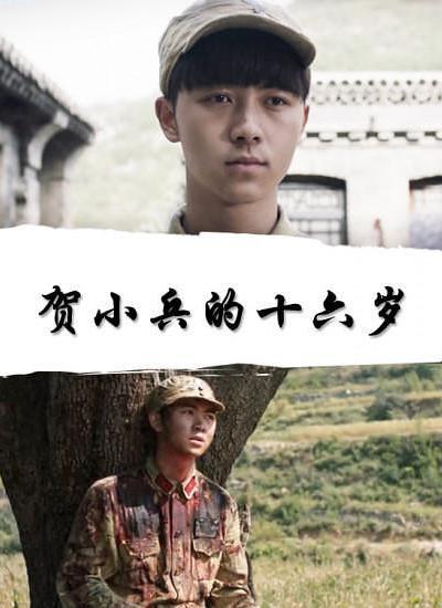 贺小兵的十六岁海报