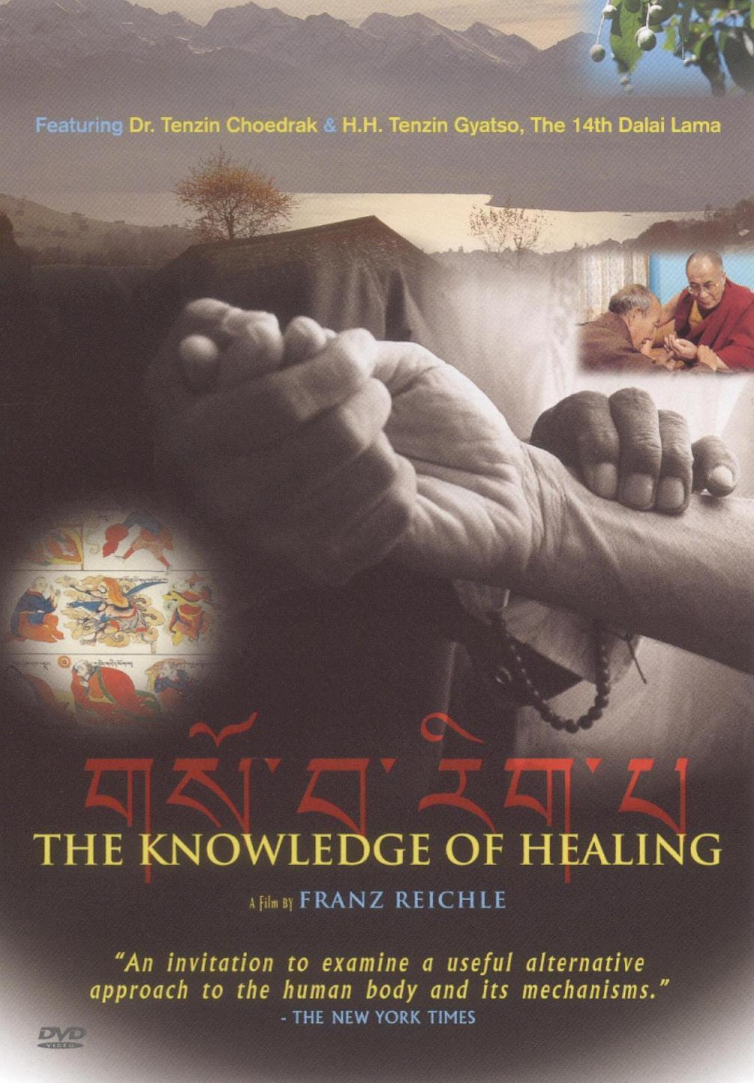 疗愈的知识