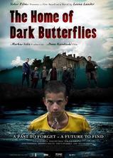 黑蝴蝶之家海报
