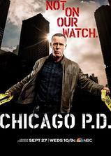 芝加哥警署 第五季海报