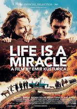生命是个奇迹海报