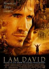 我是大卫海报