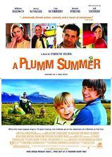 普卢默的夏天海报