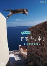 岩合光昭的猫步走世界海报