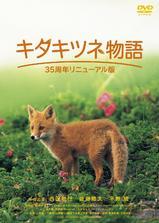 狐狸的故事海报