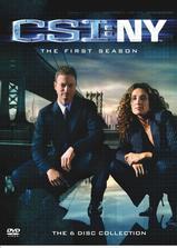 犯罪现场调查:纽约 第一季海报