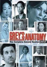 实习医生格蕾  第二季海报